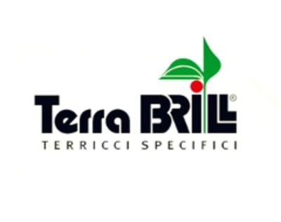 TERRA BRILL