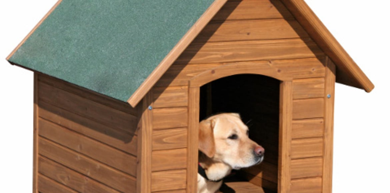 Hundehütten als Rückzugsort