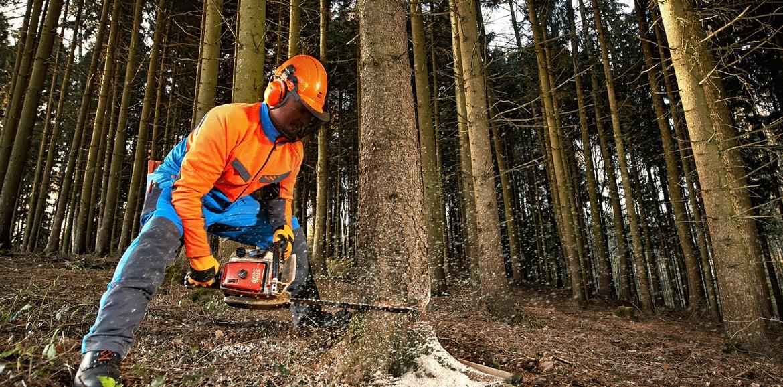Lavoro forestale in completa sicurezza