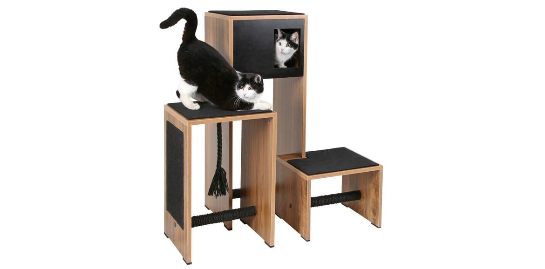 Katzenbaum: Garantierter Spaß für Katzen