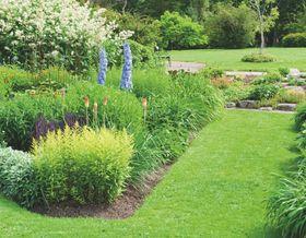 Un giardino invidiabile