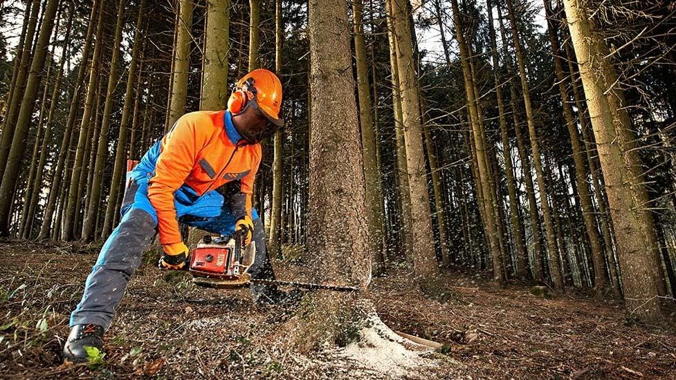 Forstbekleidung