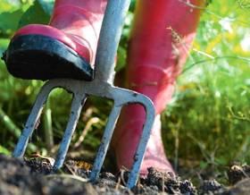 Come preparare il terreno per l'orto