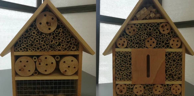 Cos'è un hotel per insetti e perché dovremmo averne uno nel nostro giardino.